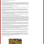 Dmitri Chavkerov - KCOY CBS-12 (Santa Maria, CA) - Lean Forex Trading